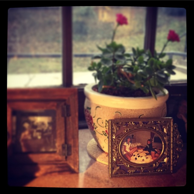 winter blossom (instagram)